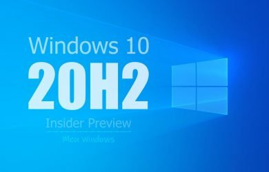 Windows 10 Insider Preview Build (20H2)